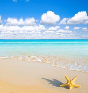 Playa Dreams
